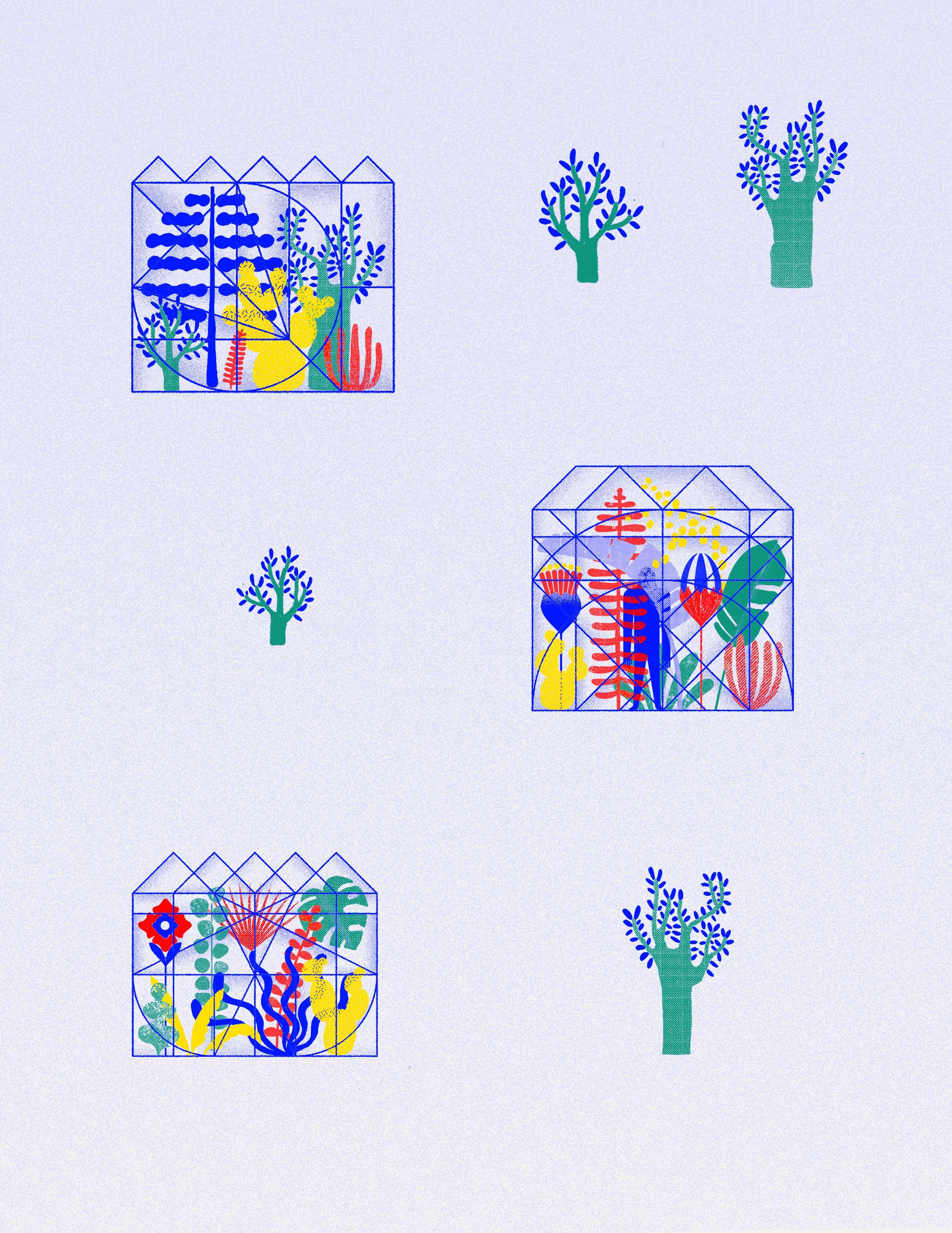 Juliaschwarzillustration-botanical-garden-content